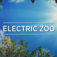 Electric Zoo - New York